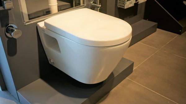 Serel Smart SM260DS110H Spülrandloses Dusch WC